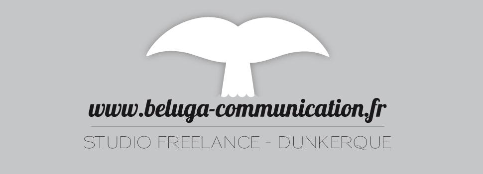 Beluga communication